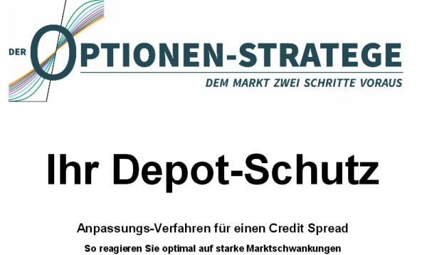 Depot Schutz logo